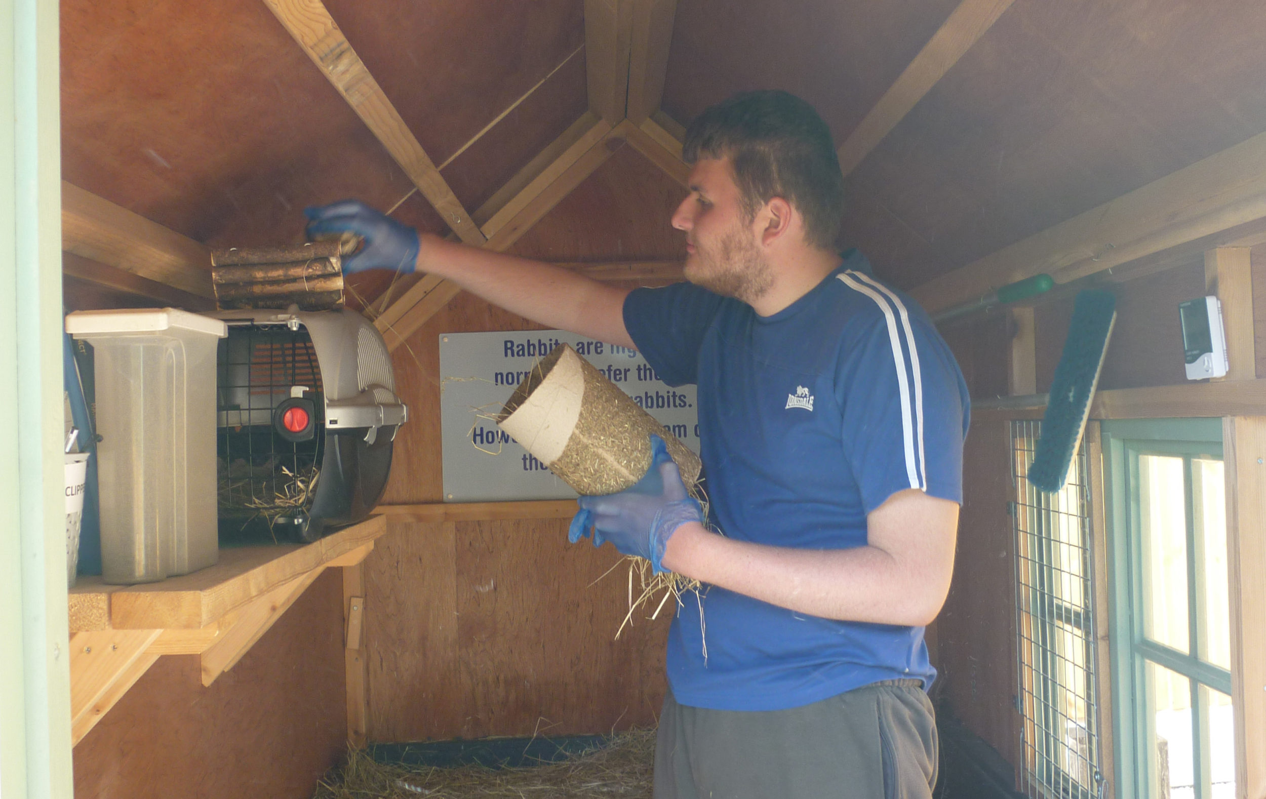 Sam filling a hutch with hay